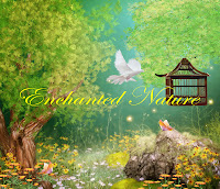 Enchanted Nature digital fantasy backgrounds