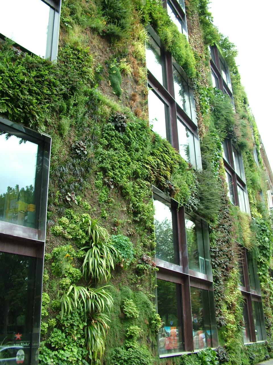lettera13 giardini verticali