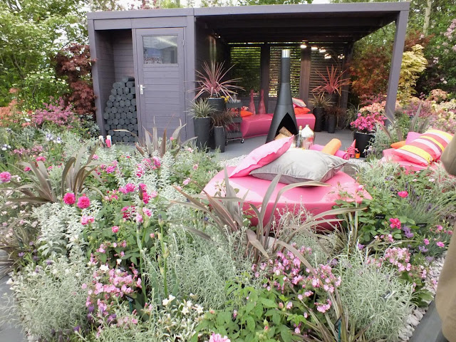 Hilliers garden won them another Gold medal at RHS Chelsea Flower Show this year.