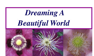 Dreaming A Beautiful World
