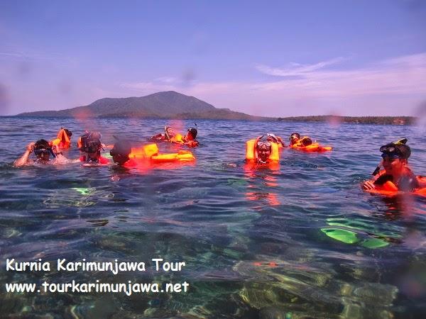 tour karimunjawa 3 hari kapal express pp