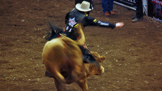 Leonel Trejo, 40, of New Castle, Del., was riding a bull in the rodeo held ...