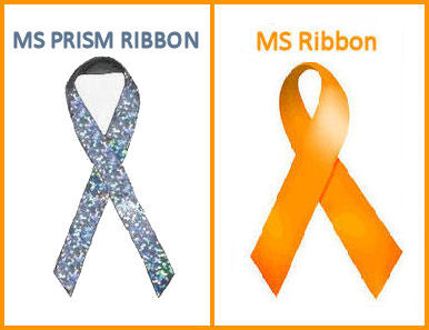 HELP MAKE A DIFFERENCE ~ SUPPORT MS AWARENESS