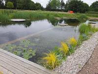 Fagley primary garden team sensory garden training course for Garden training pool