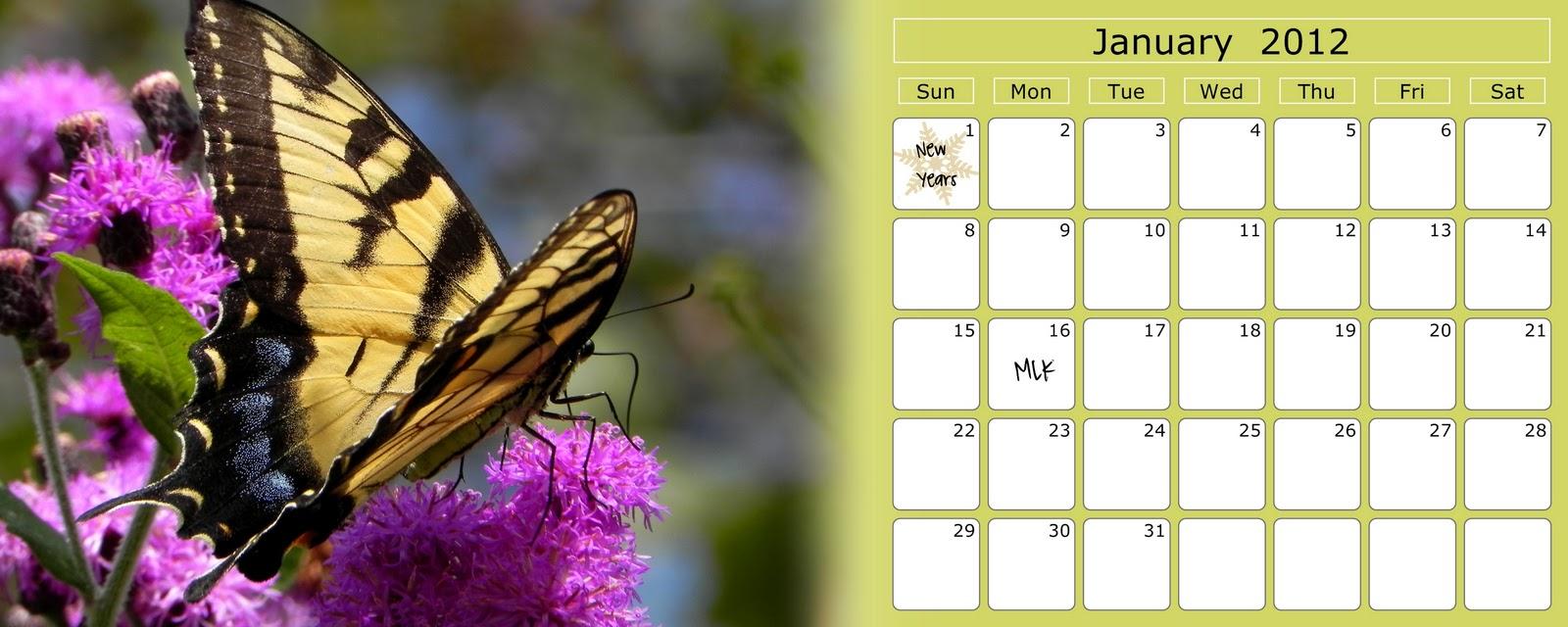 Power Of The Flower Butterfly Desk Calendar 2012