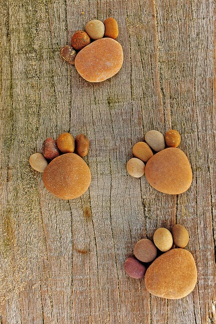Stone Footprints Craft