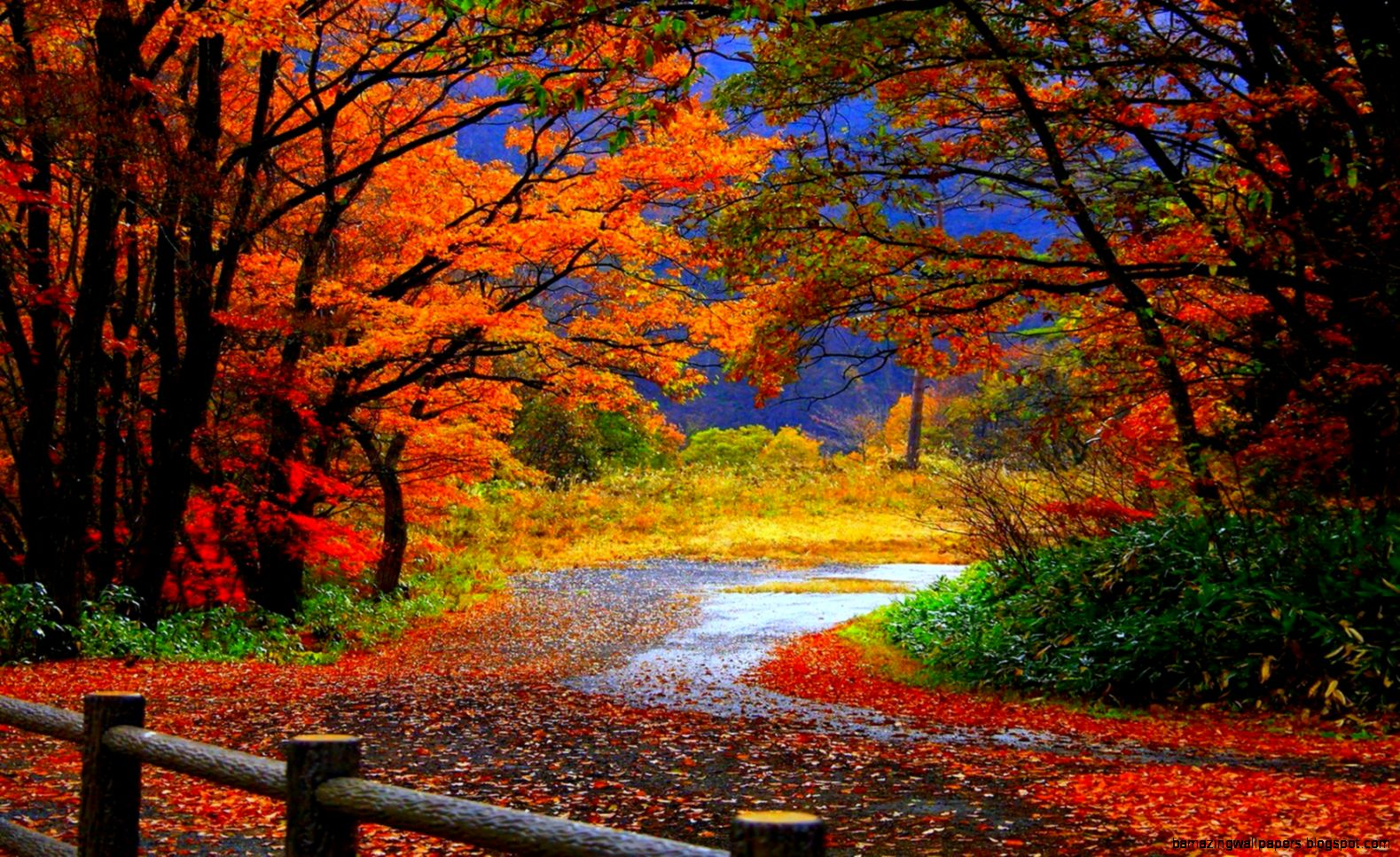 HD Fall Desktop Wallpaper   WallpaperSafari