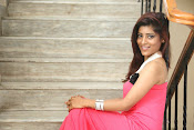 actress Gayatri glamorous photos-thumbnail-7
