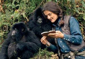 Dian Fossey – Palsuvai Thoranam