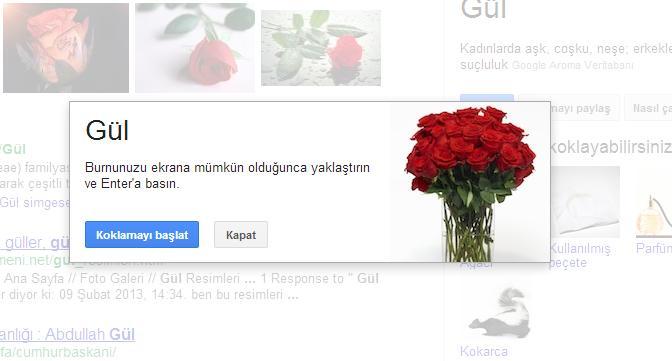 google_nose