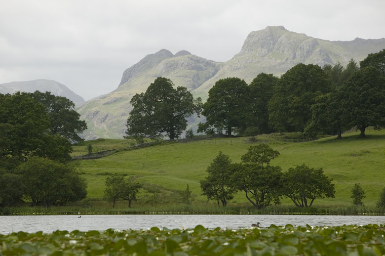 Langdale