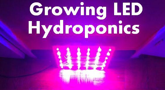 Image of Alat bantu photosynthesis tanaman