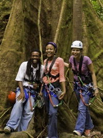 St. Lucia tours, activities, and top attractions.