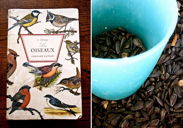 Literature, Bird seed