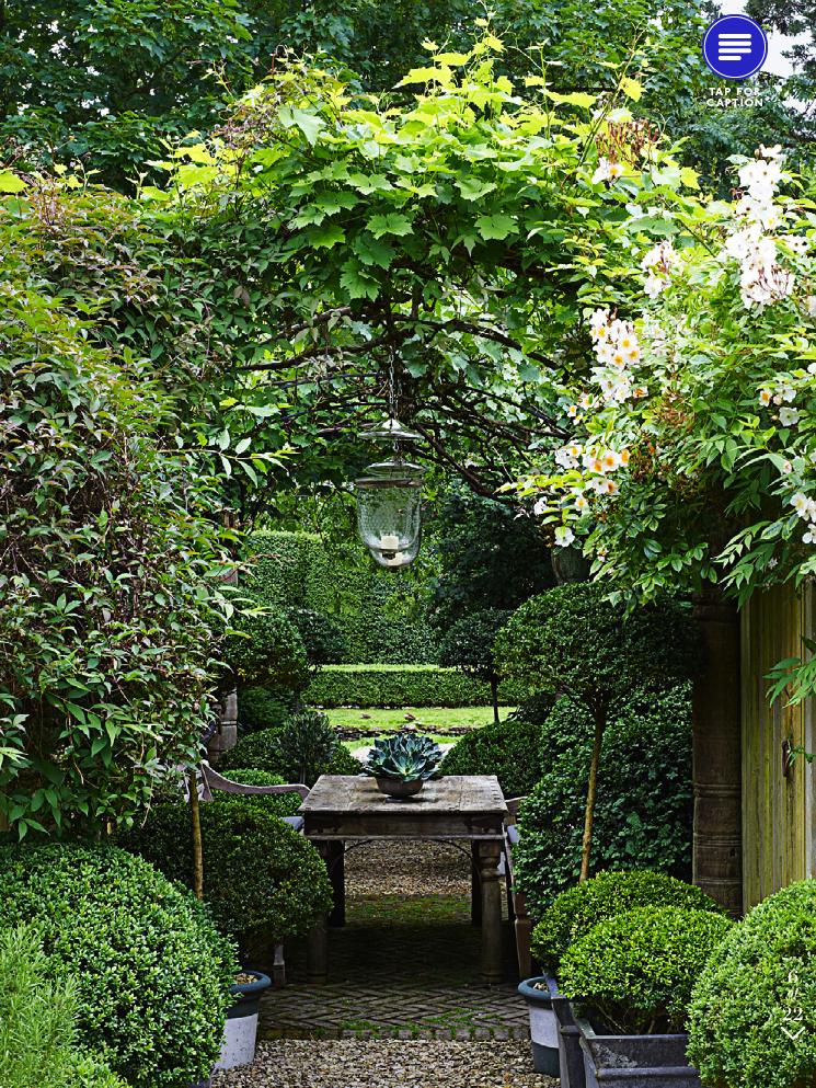 Splendid sass anouska hempel interior design for Botanical garden design
