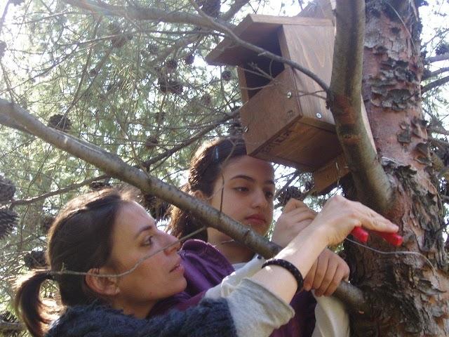 Δίκτυο αδόμητων χώρων: Για τα πουλιά και τους ανθρώπους