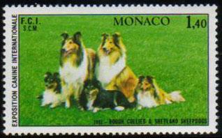 1981年モナコ公国 ラフ・コリーの切手
