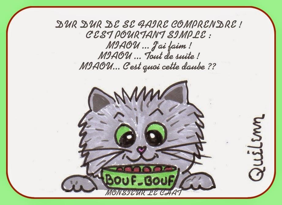 langage de chat, miaou