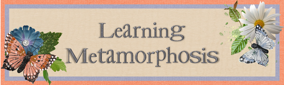 The Learning Metamorphosis