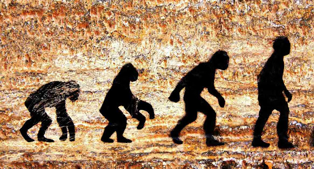 Evolucion y biologia