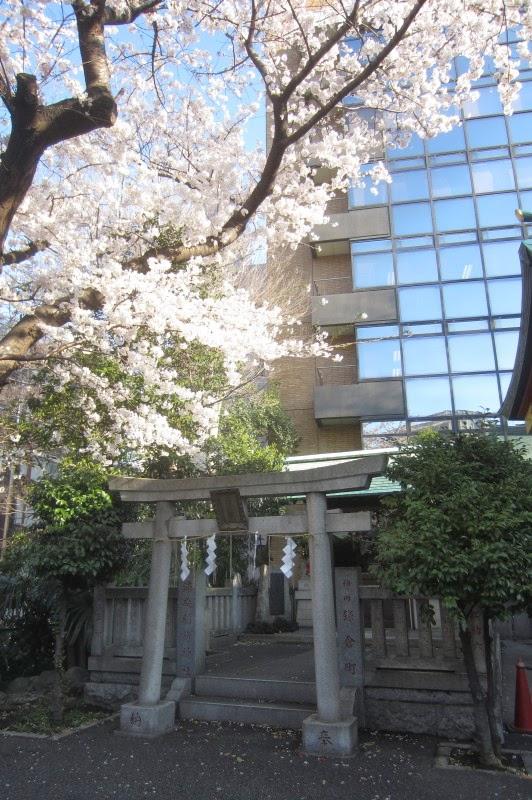 浦安稲荷と桜