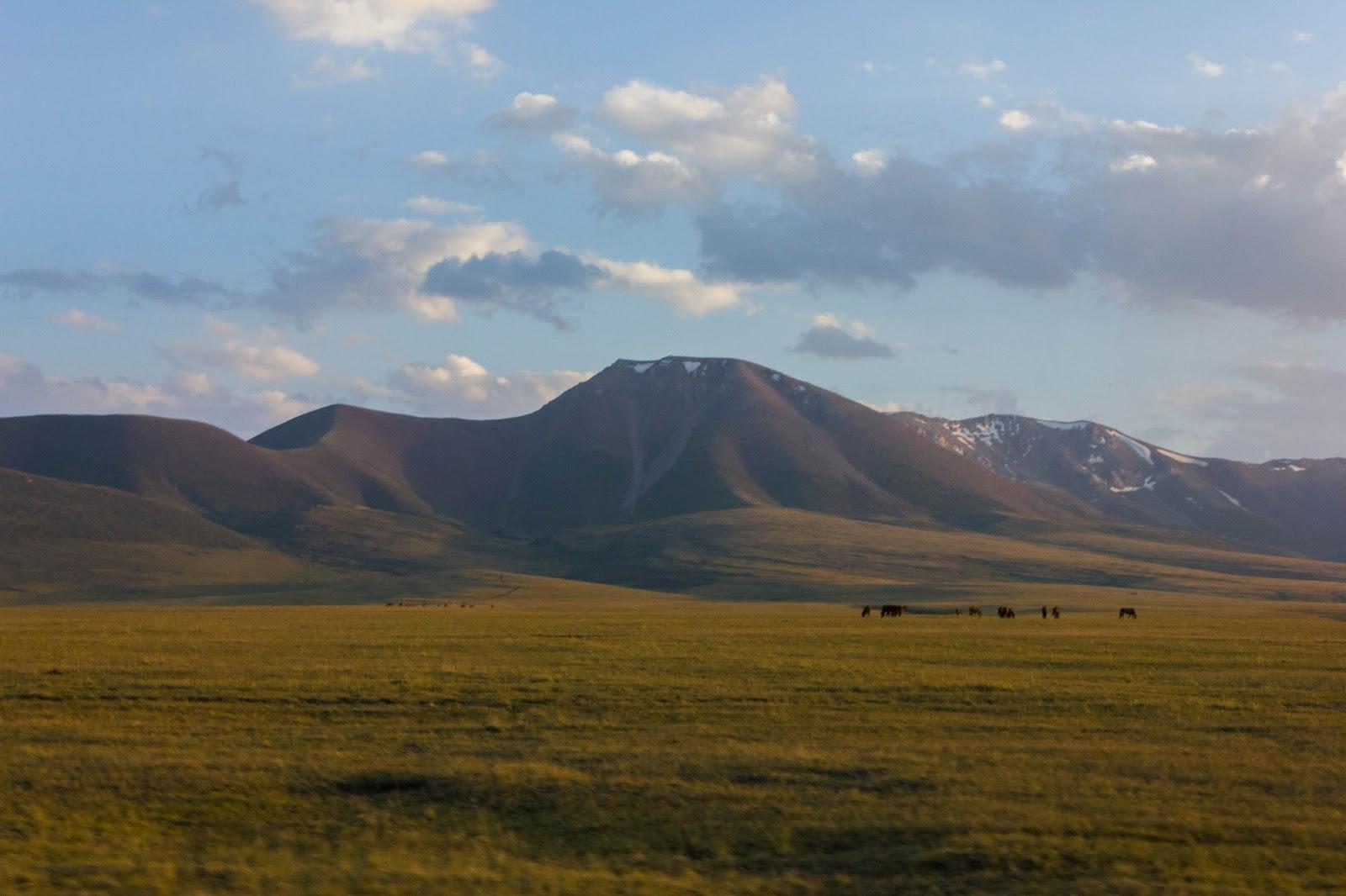 Кыргызские горы, Сон-куль, Лошади