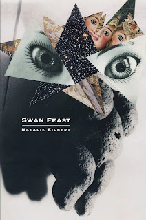 Cover of Swan Feast by Natalie Eilbert