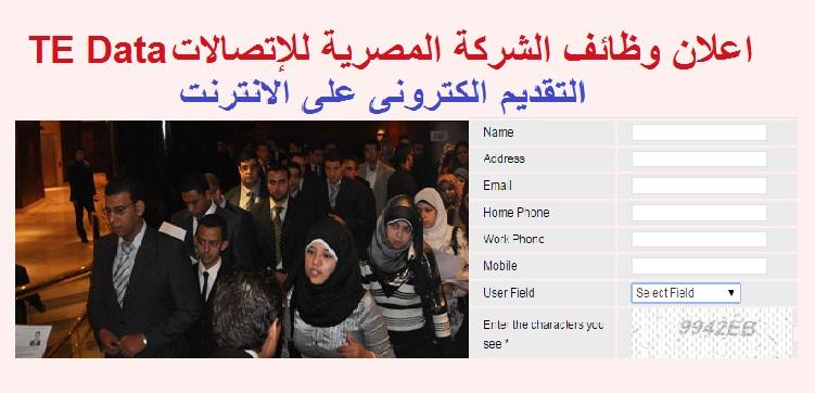 """وظائف خالية بمجموعة المصرية للإتصالات """" TE Data """" للجميع - التقديم على الانترنت"""