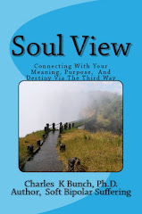 New Book at Amazon.com: Soul View