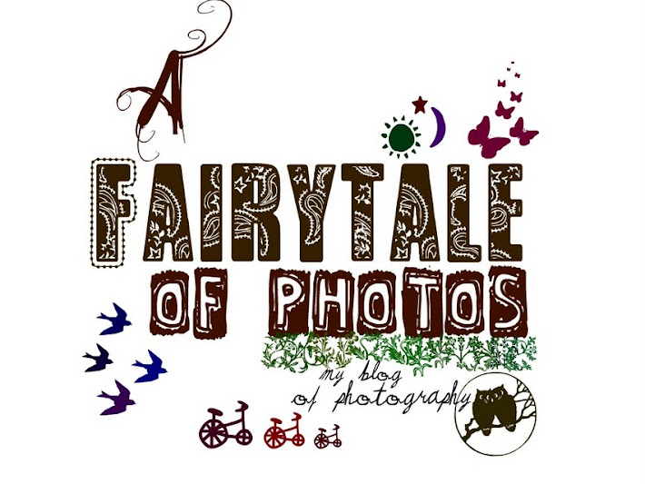 A Fairytale of Photos