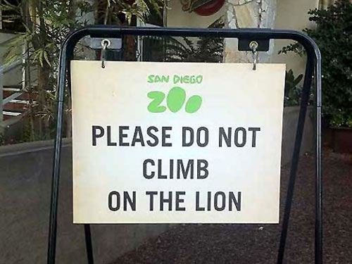 funny zoo sign please do not climb on lion