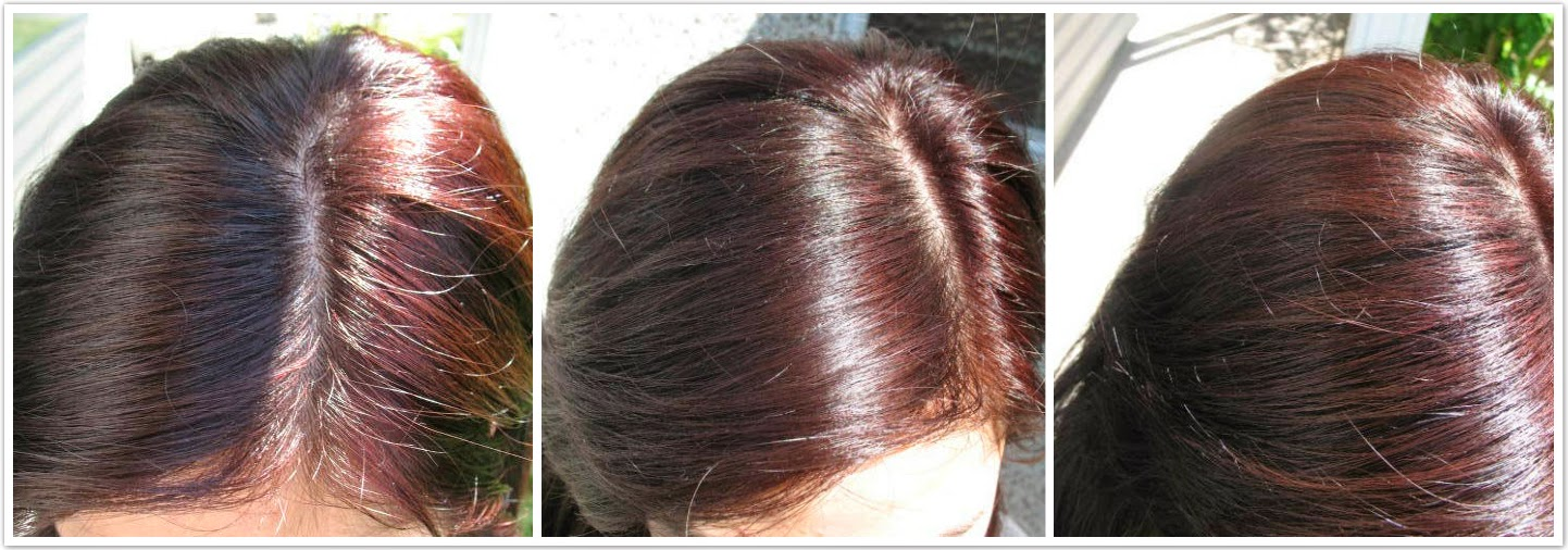 Jello Ca Revlon Colorsilk Hair Dye Review In Burgundy 48