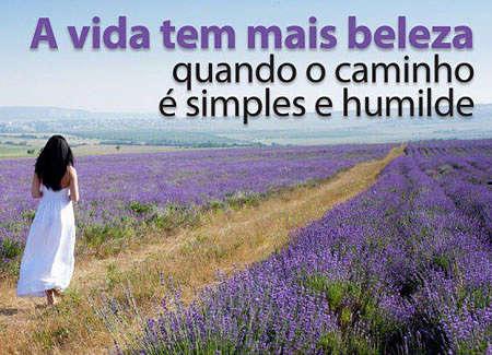 A vida tem mais beleza quando o caminho é simples