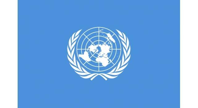 Avis Du Groupe de Travail de l'ONU sur la dtention arbitraire