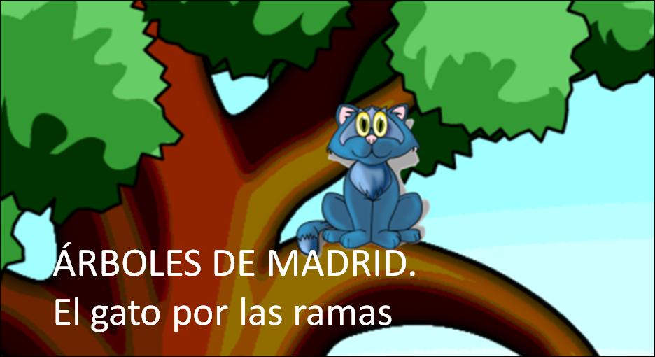 ÁRBOLES DE MADRID. El gato por las ramas.