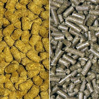 Io tartaruga trachemys pellet e integratori for Pellet per tartarughe