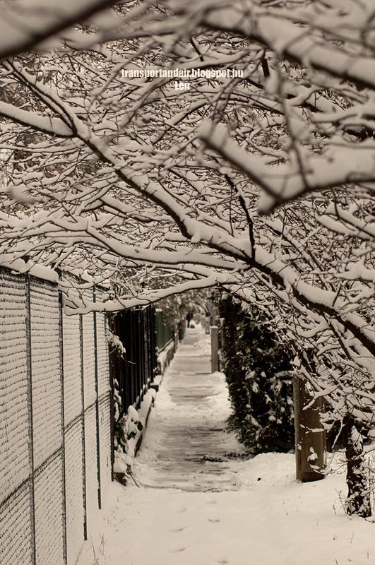 Friss hó borítja a fákat egy csendes Budapesti utcában