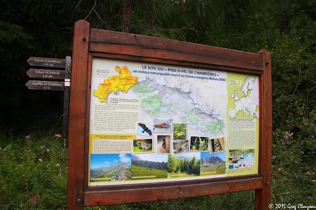 Sous la station de Réallon se trouve le site du Piolit - Pic de chabrière classé Natura 2000