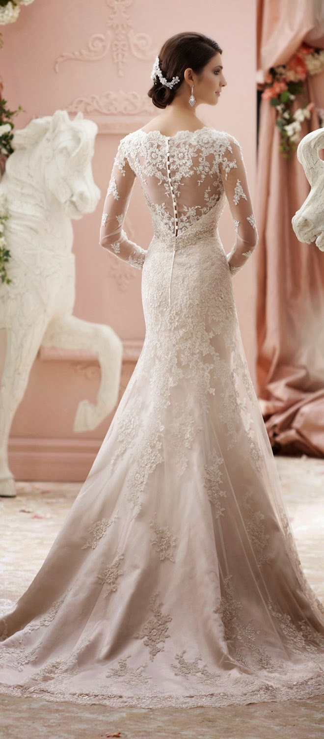 Best wedding dresses of 2014 belle the magazine the wedding blog our feature of david tutera for mon cheri spring 2015 is among the most viewed of the year these stunning wedding dresses will tell you why junglespirit