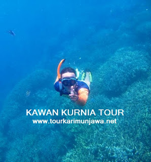 paket tour tahun baru Karimunjawa