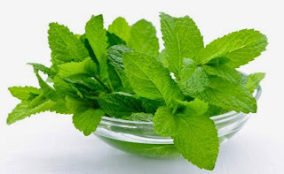 Homemade Mint Face Mask for Acne Scars