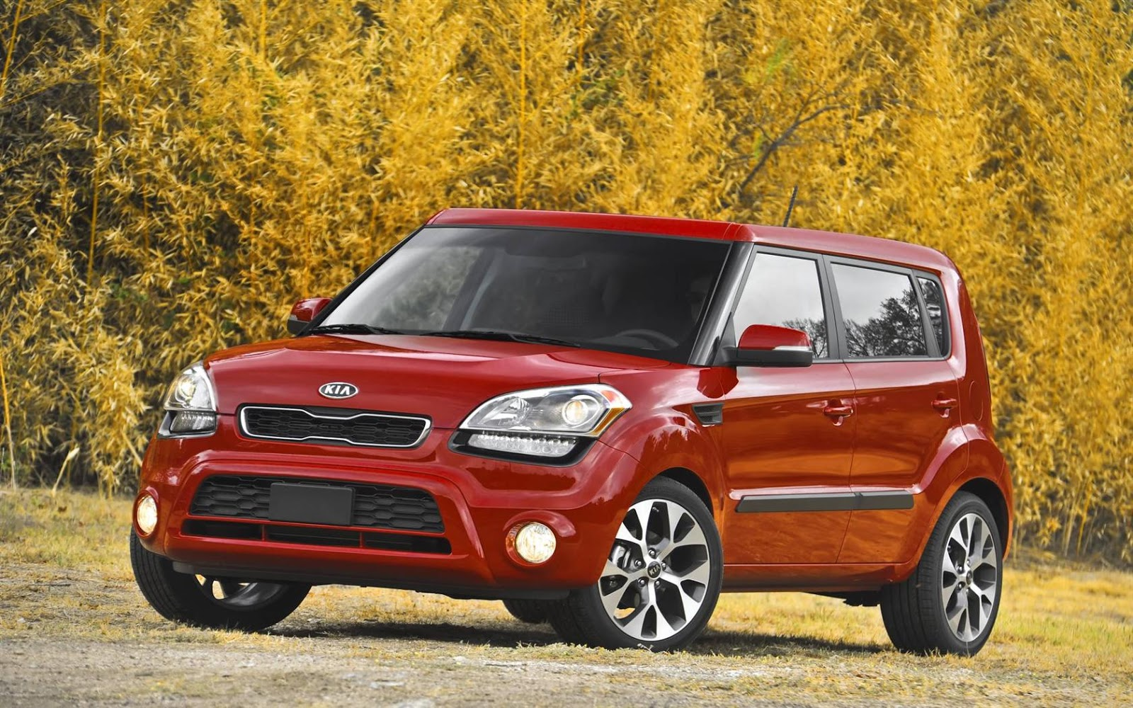 most wanted cars kia soul. Black Bedroom Furniture Sets. Home Design Ideas