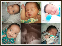 Meu bebê