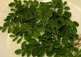 Moringa leaf , Natural supplements