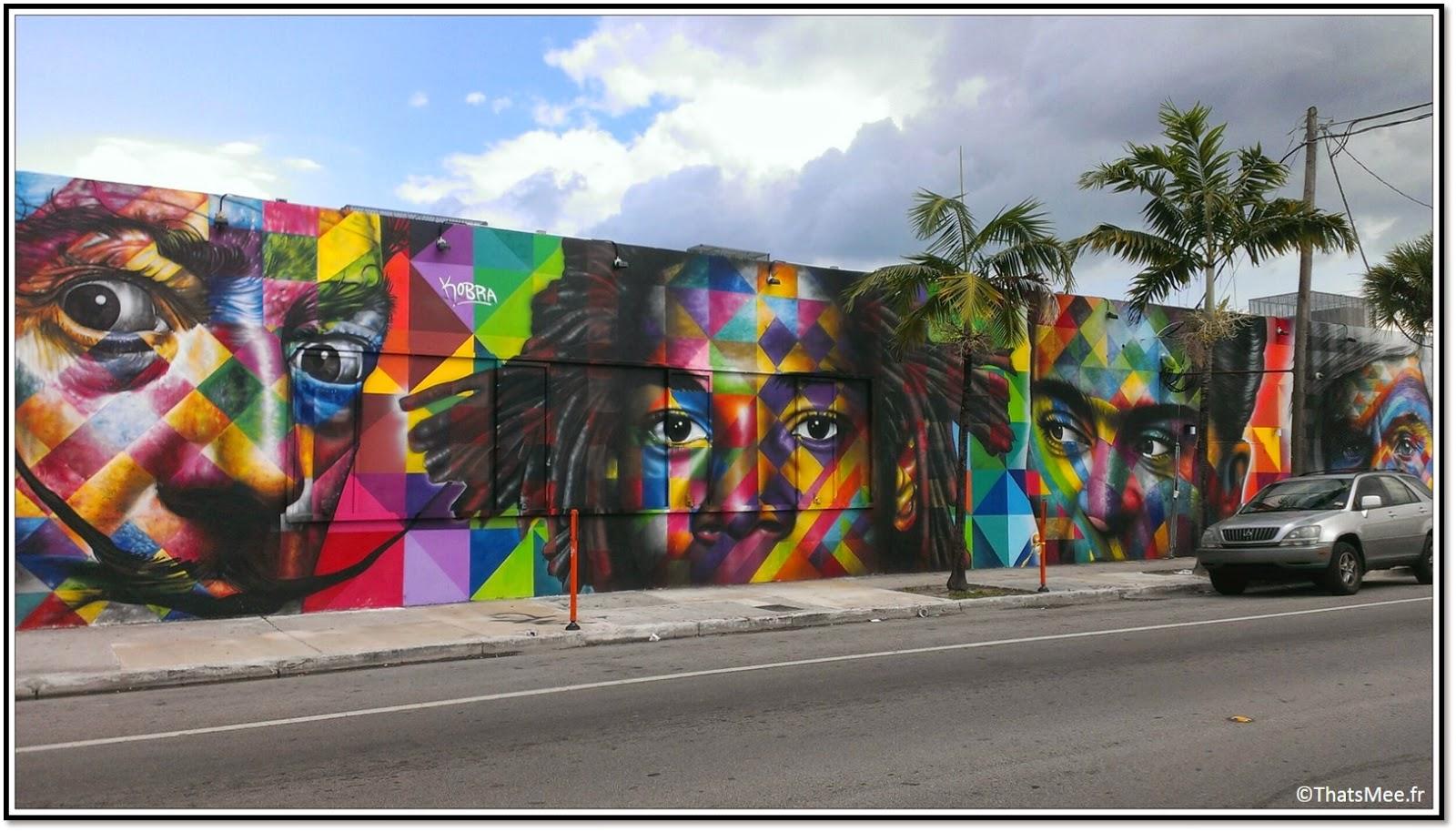Miami midtown Wynwood District Street Art galleries NW 2nd Avenue  Dali Basquia Andy Warhol