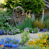 A Native Garden Design