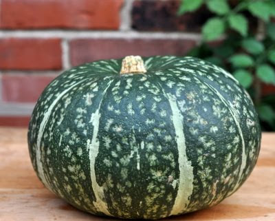 Use a Kabocha Squash, not a pumpkin, to make Homemade Pumpkin Purée. For Weight Watchers, #PP2 #KitchenParade