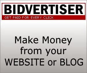 Cara Daftar dan Dapatkan Dollar Dari Bidvertiser