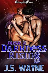 Darkness Rising by J.S. Wayne