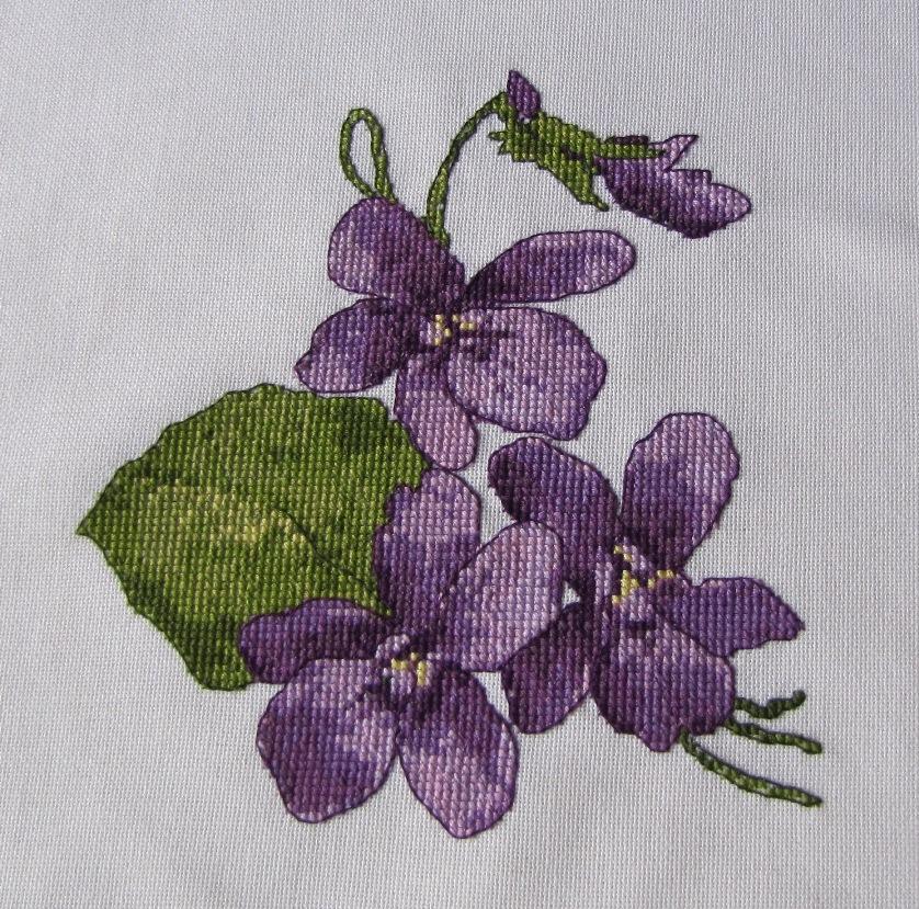 Клумбы из низкорослых сортов цветов 42